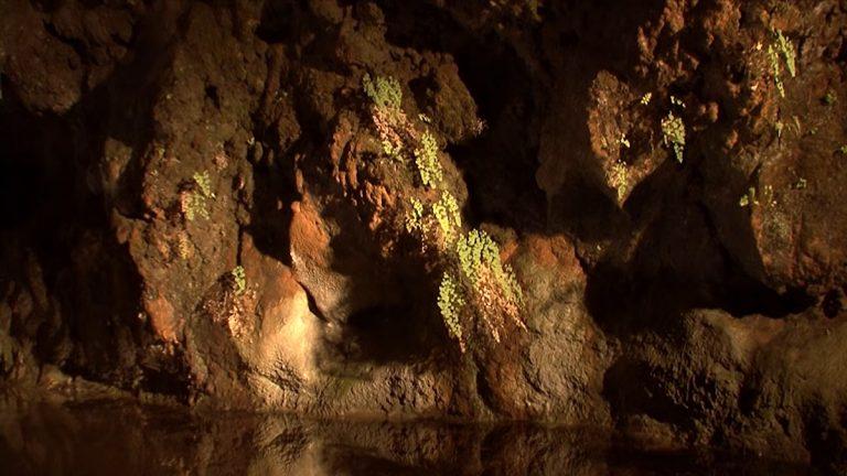 Sao Vincente Grottas