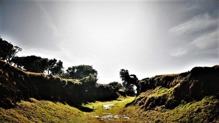 Fanal ein Teil der Hochebene Paul da Serra