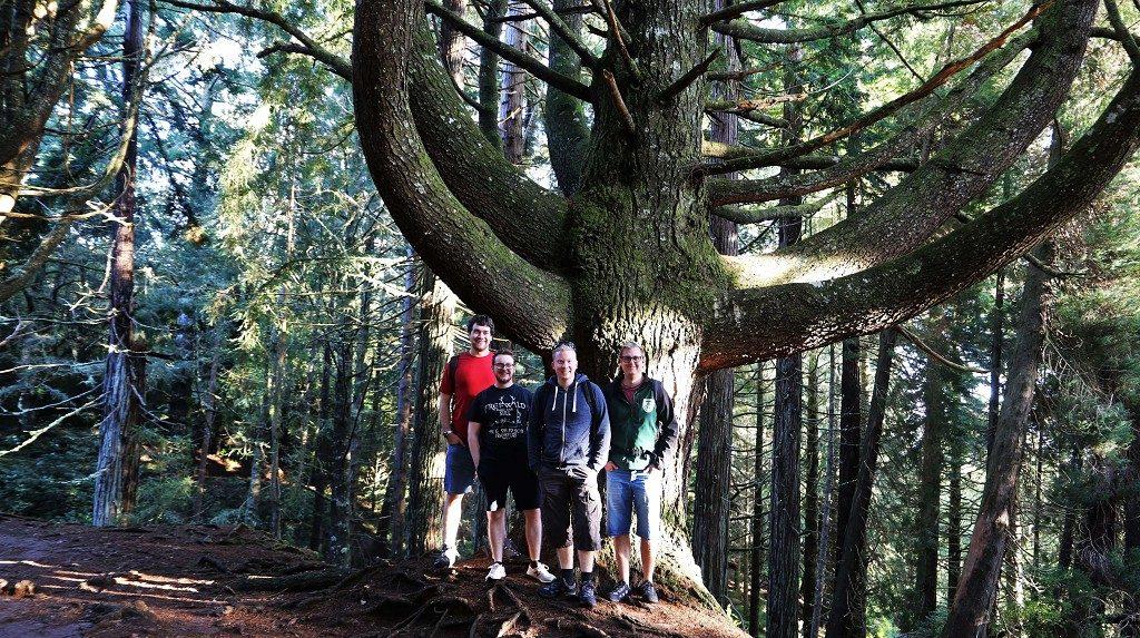 Madeira Ausfluege Levadawanderung Grüner Kessel