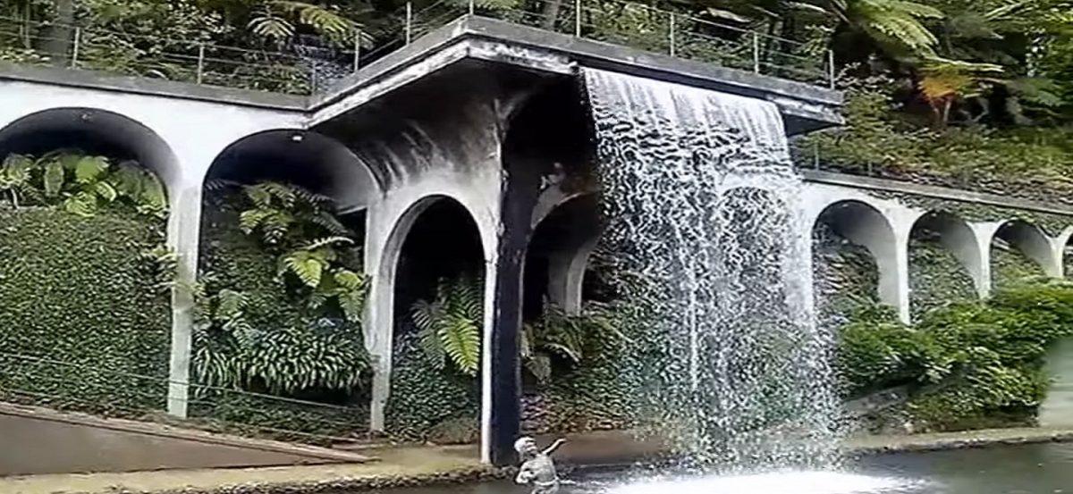 monte palace tropical garden eintrittspreise